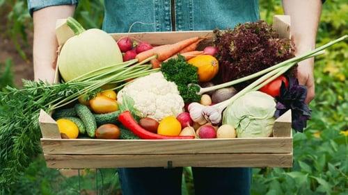 Les paniers de fruits et de légumes bio et local de chez efarmz et Misuko