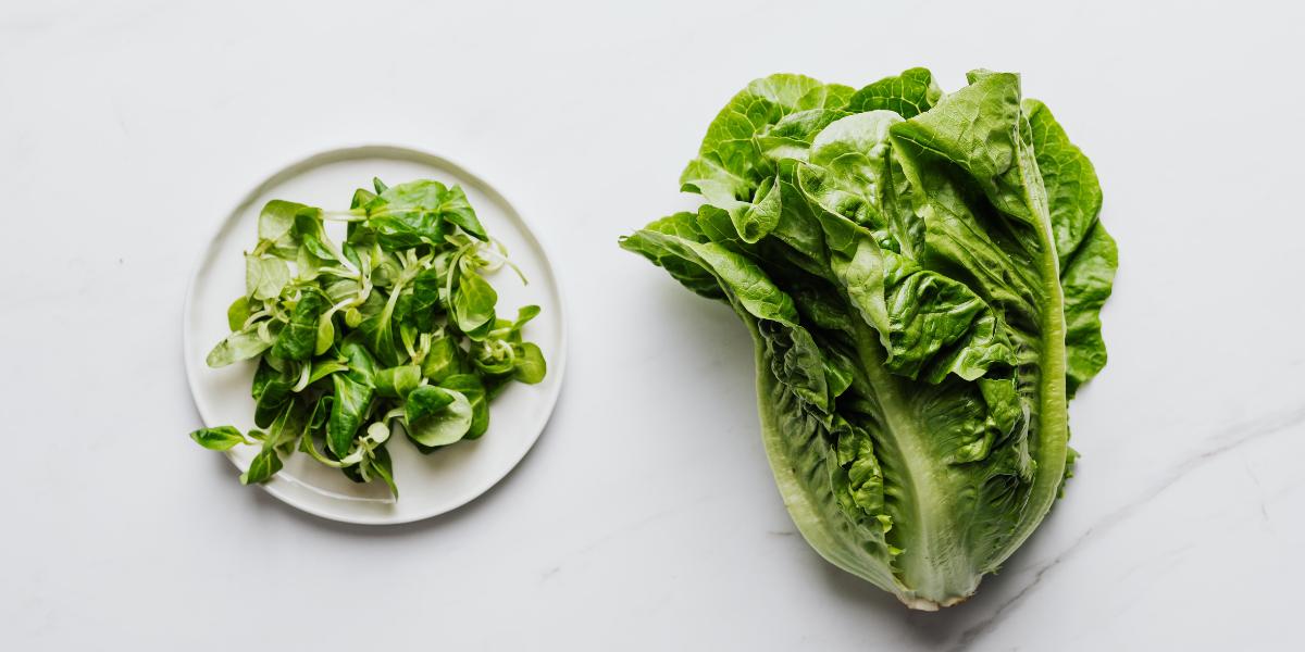 Les fruits et légumes à mettre dans votre assiette en Novembre