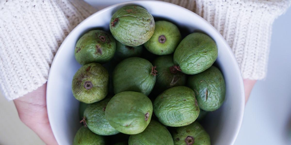 Les baies Nergi pourraient bien devenir LE nouveau super fruit